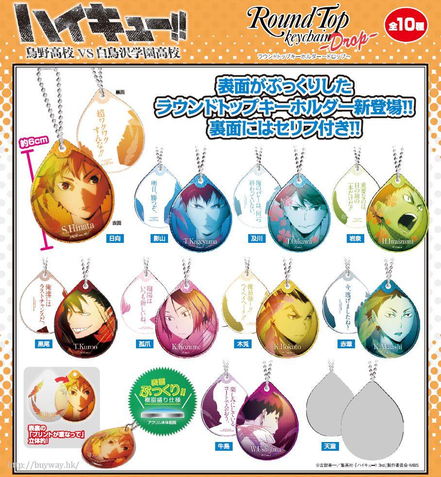 排球少年!! Drop 水滴匙扣 (10 個入) Round Top Key Chain -Drop- (10 Pieces)【Haikyu!!】