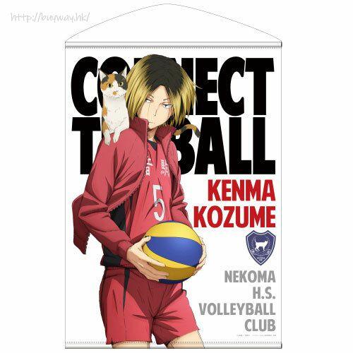 排球少年!! 「孤爪研磨」B2 掛布 Kenma Kozume B2 Wall Scroll【Haikyu!!】