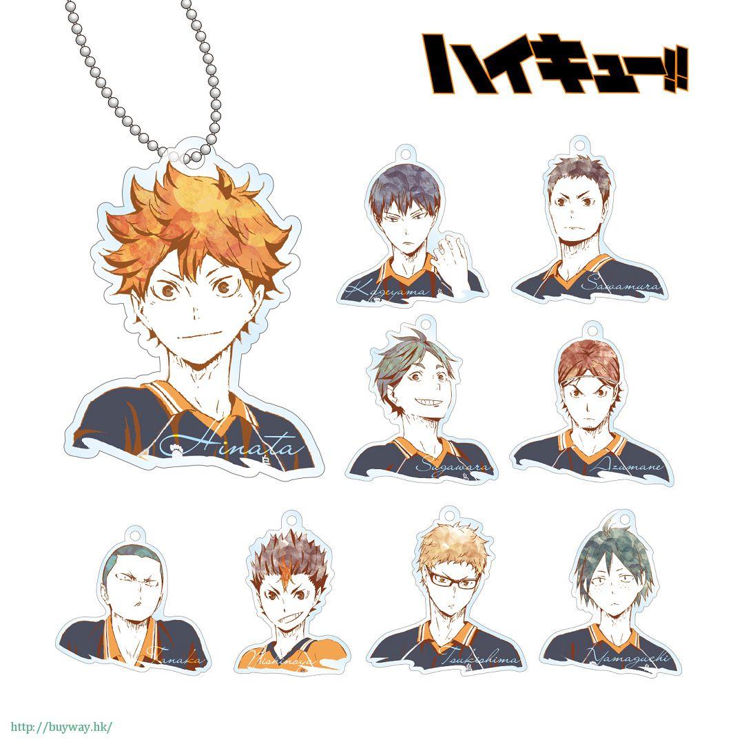 排球少年!! Ani-Art 亞克力匙扣 Box A (9 個入) Ani-Art Acrylic Key Chain Ver. A (9 Pieces)【Haikyu!!】