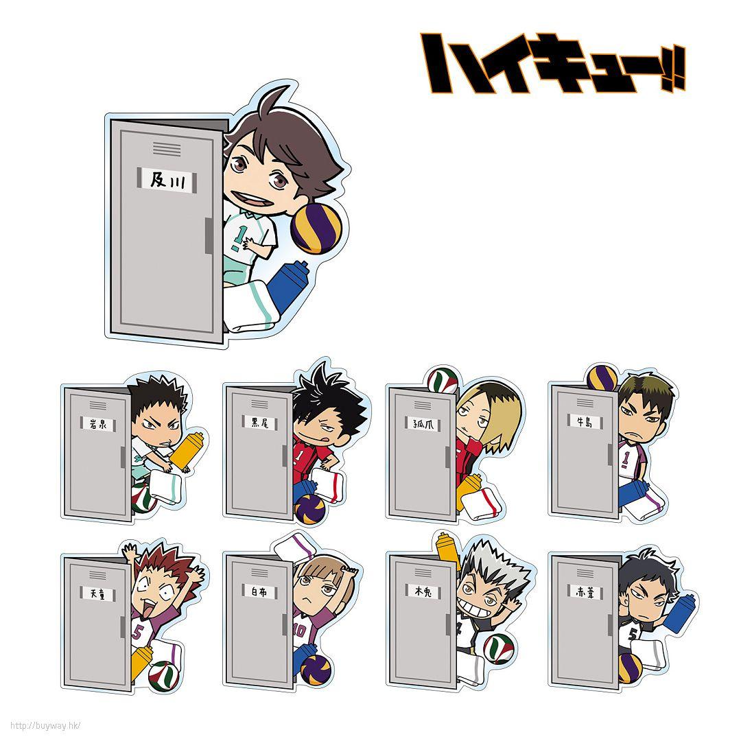 排球少年!! Locker 磁貼 Box B (9 個入) Locker kara Hyokkori Acrylic Magnet Ver. B (9 Pieces)【Haikyu!!】