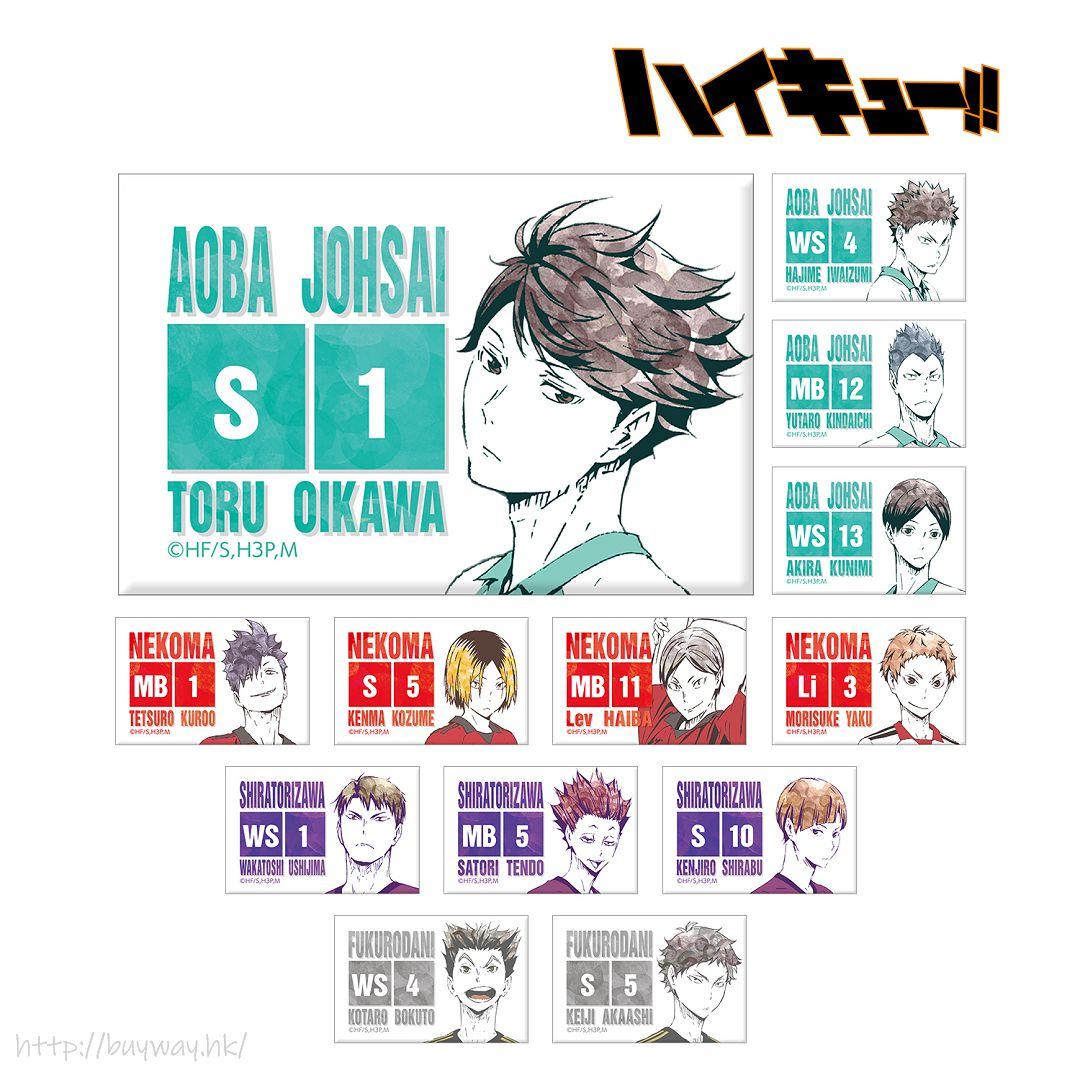 排球少年!! Ani-Art 方形磁石 Ver.B (13 個入) Ani-Art Can Magnet Ver. B (13 Pieces)【Haikyu!!】