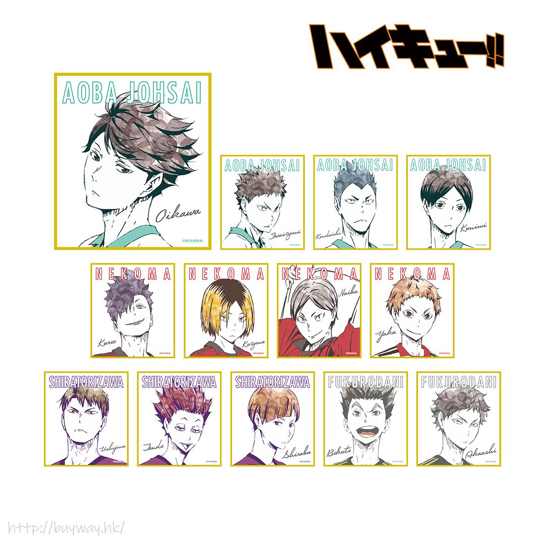 排球少年!! Ani-Art 色紙 Ver. B (13 個入) Ani-Art Mini Shikishi Ver. B (13 Pieces)【Haikyu!!】