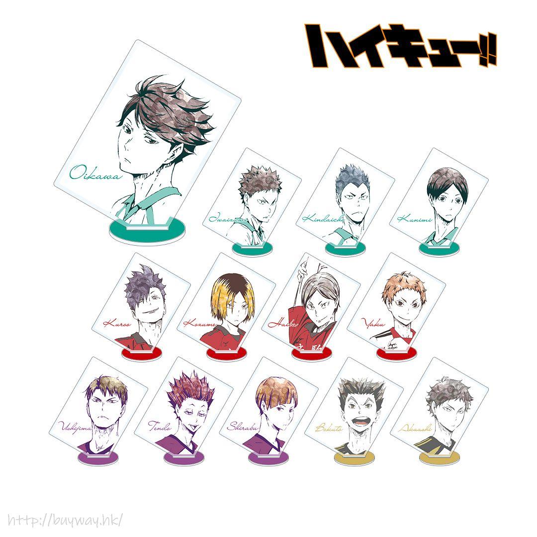 排球少年!! Ani-Art 亞克力企牌 Ver.B (13 個入) Ani-Art Acrylic Stand Ver. B (13 Pieces)【Haikyu!!】