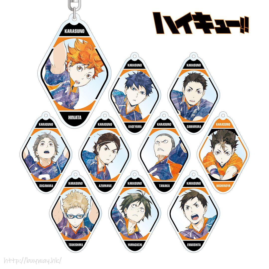 排球少年!! Ani-Art 亞克力匙扣 Vol.3 (10 個入) Ani-Art Acrylic Key Chain Vol. 3 (10 Pieces)【Haikyu!!】