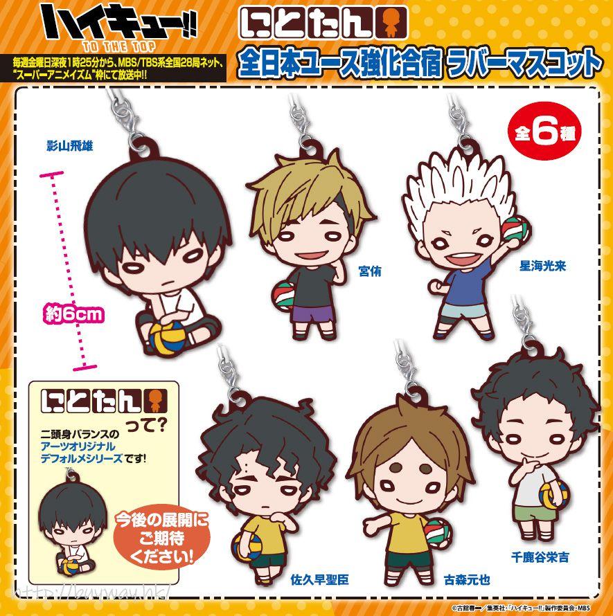 排球少年!! 豆豆眼 橡膠掛飾 全日本ユース強化合宿 (6 個入) Nitotan All Japan Youth Training Camp Rubber Mascot (6 Pieces)【Haikyu!!】