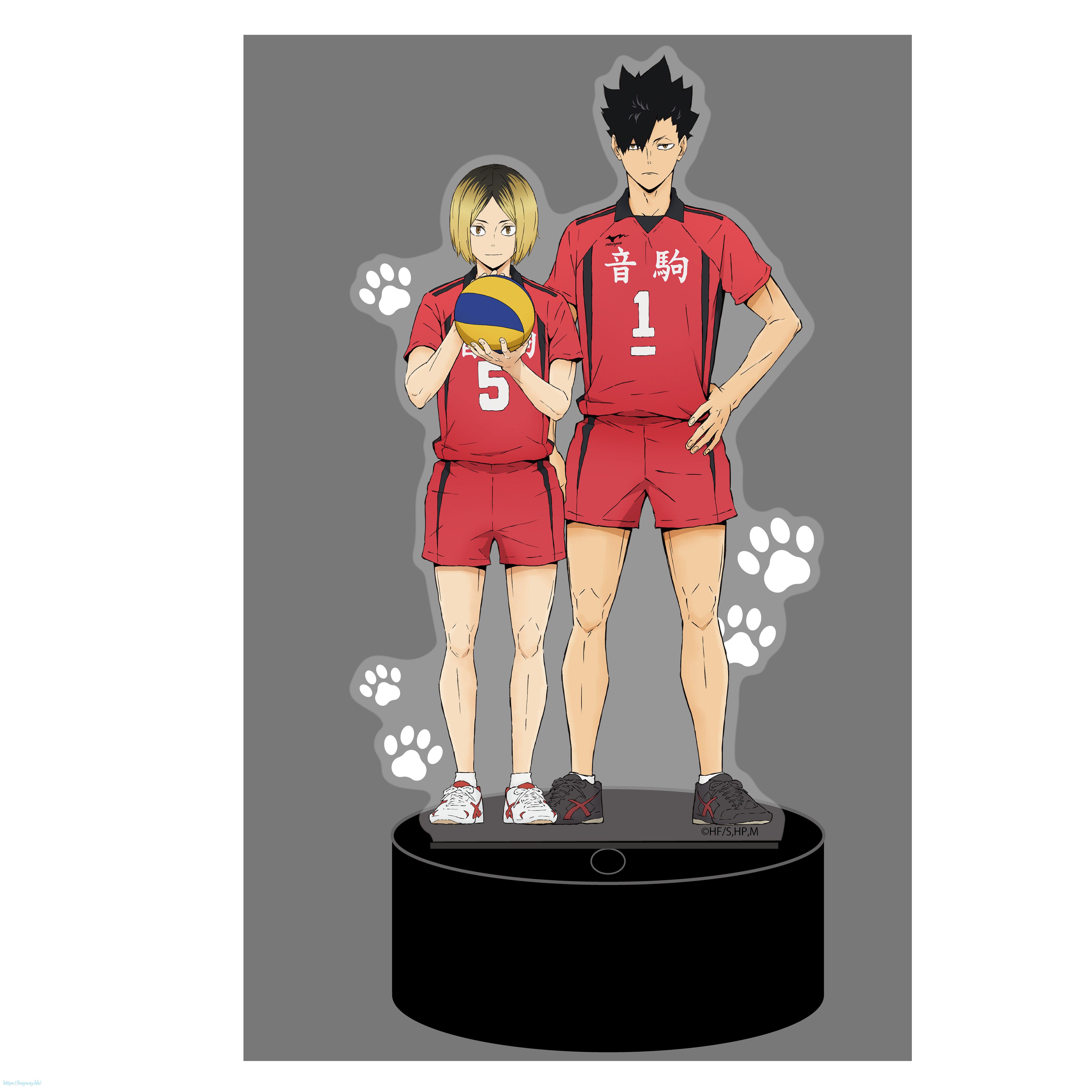 排球少年!! 「音駒高中」LED台座 亞克力企牌 LED Big Acrylic Stand 03 Nekoma High School【Haikyu!!】