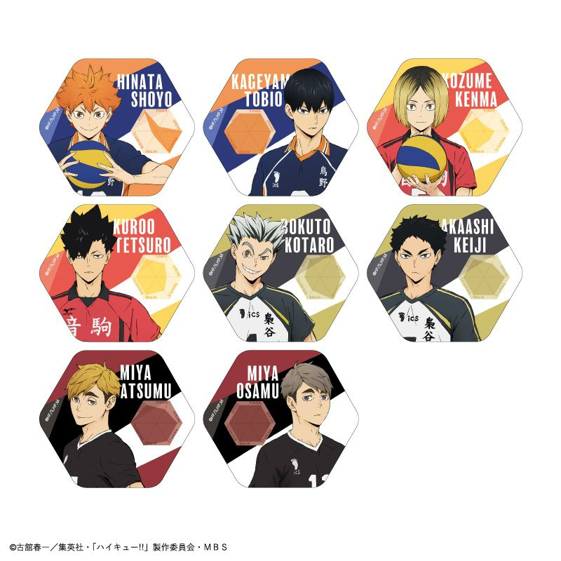 排球少年!! 六角形徽章 (8 個入) Status Can Badge (8 Pieces)【Haikyu!!】