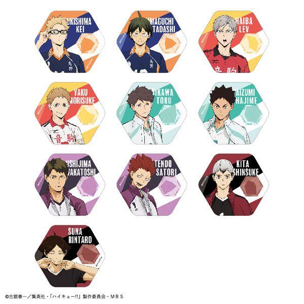 排球少年!! 六角形徽章 Vol.2 (10 個入) Status Can Badge Vol.2 (10 Pieces)【Haikyu!!】